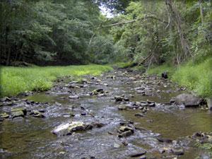 Paunacussing Creek